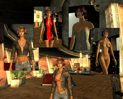 Fallout new vegas loverslab